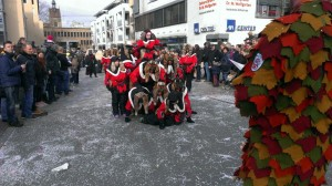 Fasching Fellbach 04